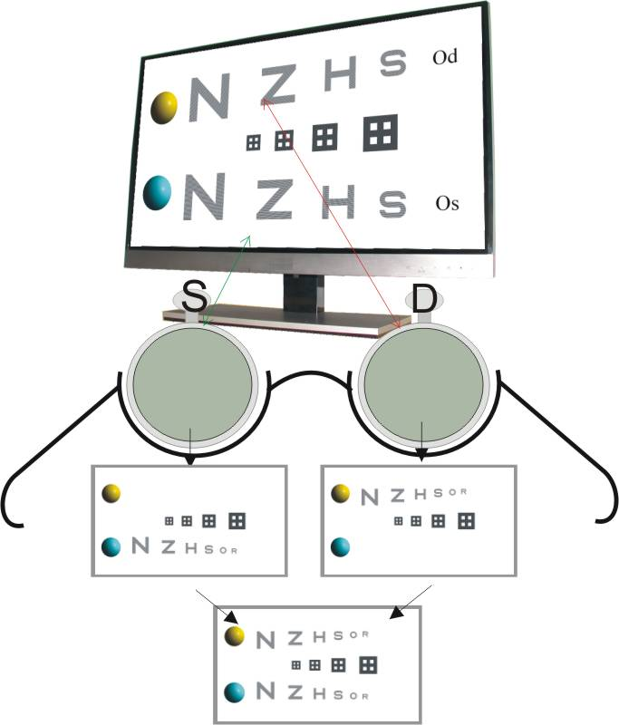 Test bilanciamento bioculare in campo binoculare